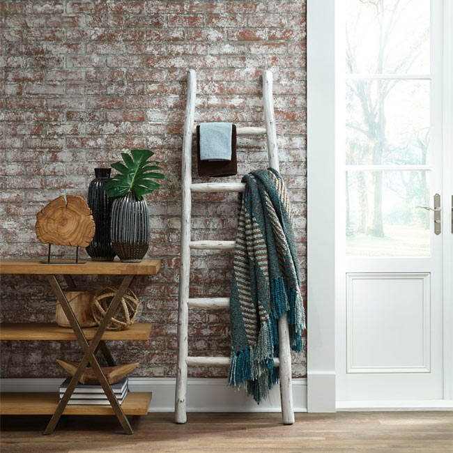 Entryway Ladder and Shelves