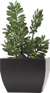 Ailyne Green Jade Silk Plant