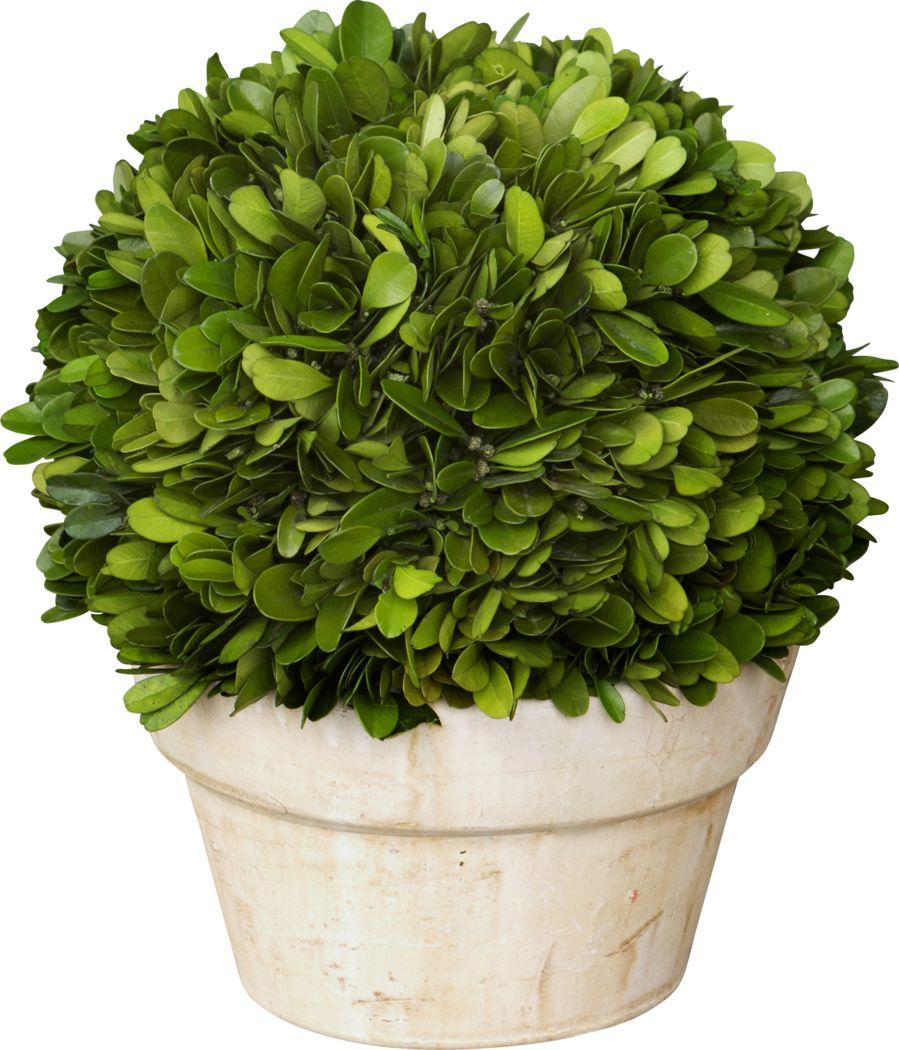 Charis Green Vase
