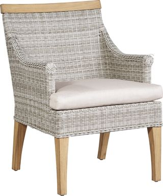 Cindy Crawford Home Hamptons Cove Gray Outdoor Arm Chair with Flax Cushion