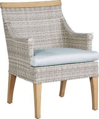 Cindy Crawford Home Hamptons Cove Gray Outdoor Arm Chair with Mist Cushion