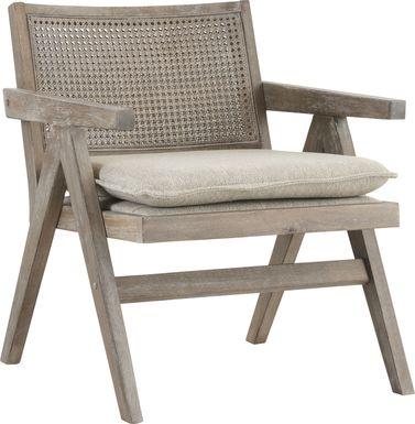 Cleanova Gray Accent Chair
