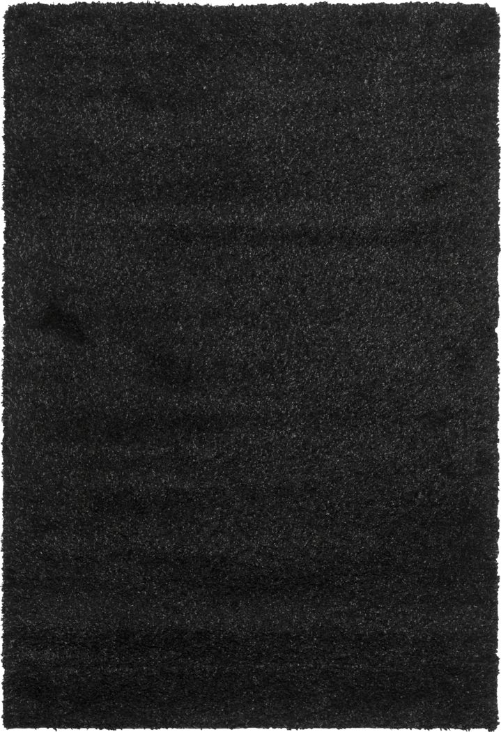 Cleona Black 3' x 5' Rug