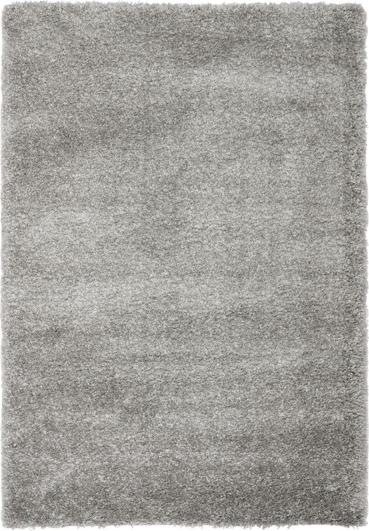 Cleona Silver 5'3 x 7'6 Rug