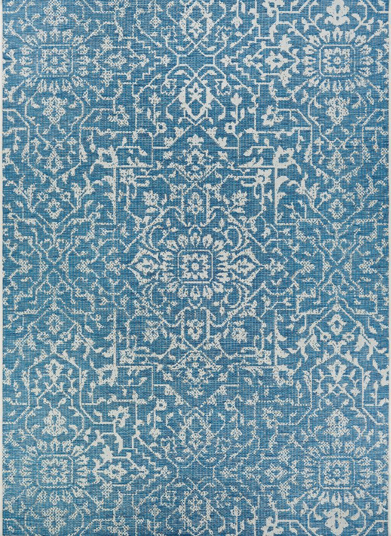 Dalmally Blue 7'6 x 10'9 Indoor/Outdoor Rug