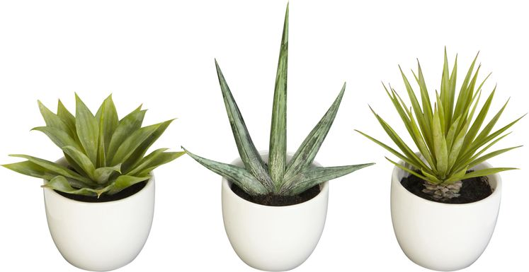 Elide Green Succulent Set of 3 Silk Plant