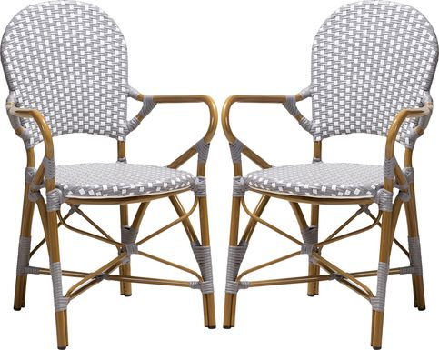 Fossi Gray Dining Chair, Set of 2