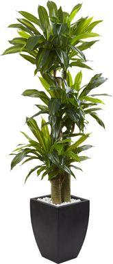 Ilani Green Dracaena Silk Tree