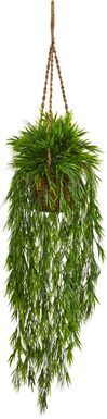 Janeli Green Bamboo Silk Plant