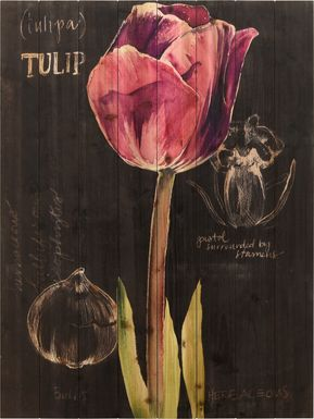 Kara's Tulips II Artwork