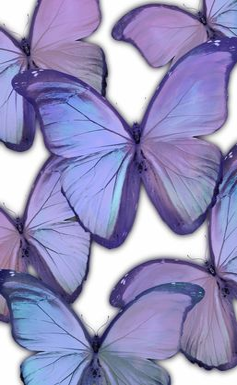 Kids Glitzy Flutter Purple Artwork