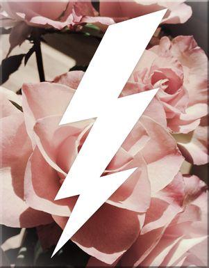 Kids Graphic Lightning Bolt and Roses Artwork