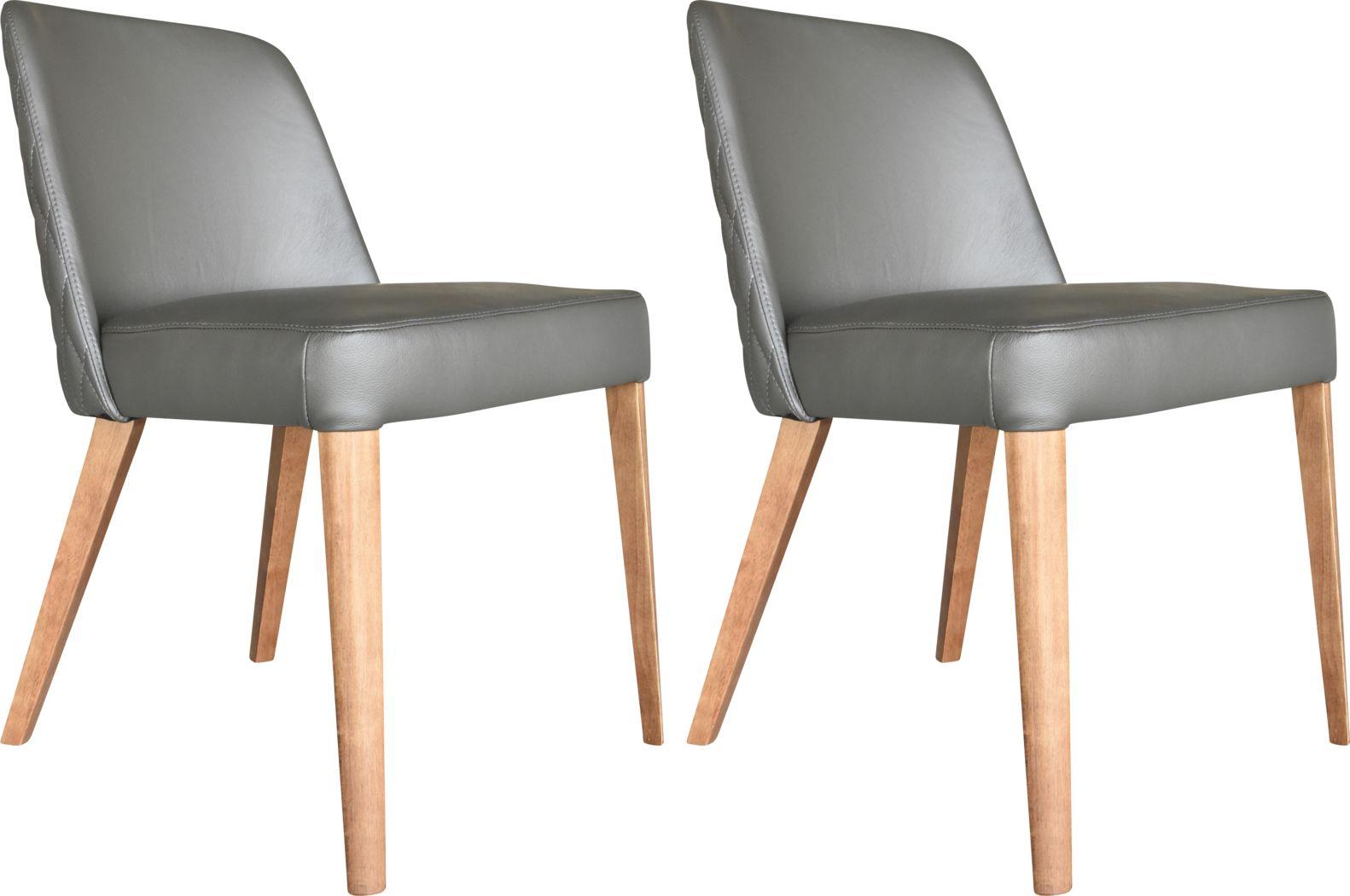 Mizpah Gray Dining Chair, Set of 2