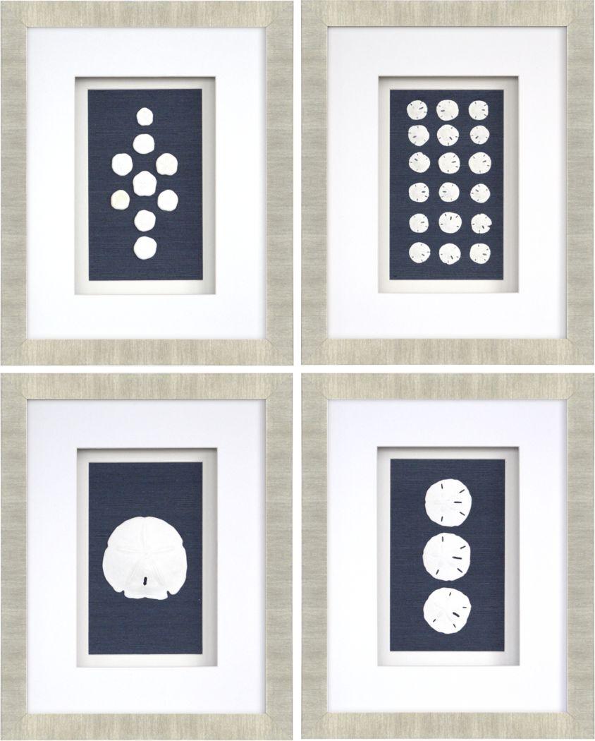 Sand Dollars Set of 4 Artwork