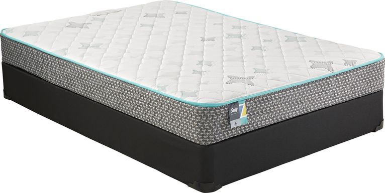 Sealy Z-301 Full Mattress Set