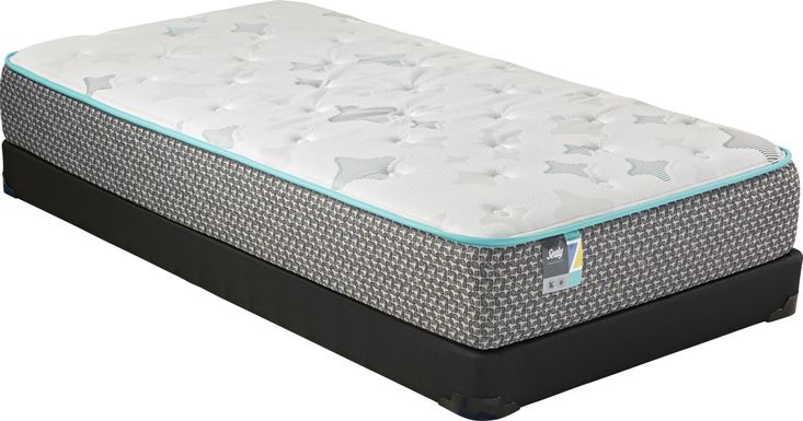 Sealy Z-501 Low Profile Twin Mattress Set