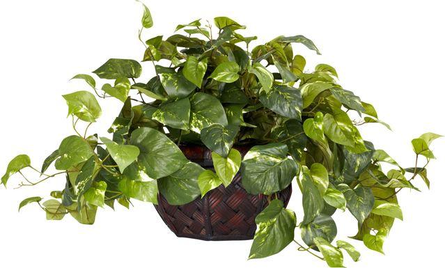 Taleah Green Pothos Silk Plant