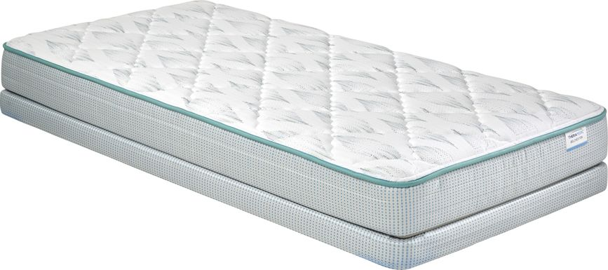 Therapedic Belchester Low Profile Twin Mattress Set