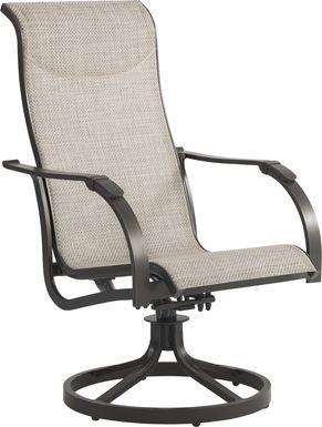 Windy Isle Bronze Outdoor Swivel Rocker Chair